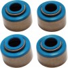 COMETIC (#C9166) SEALS VITON VALVE (10-PACK)